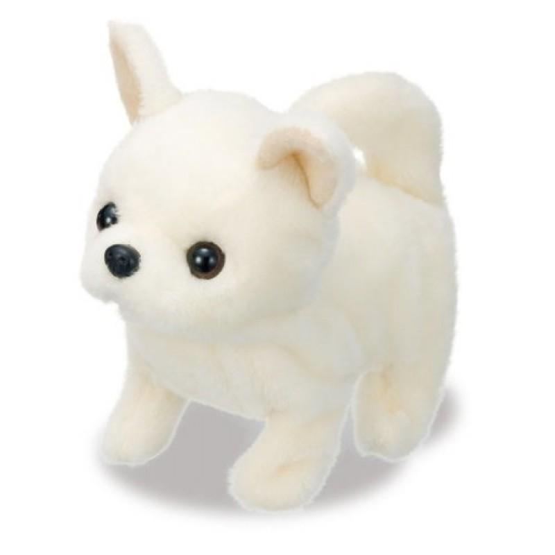 Do choi Cho bong Chihuahua