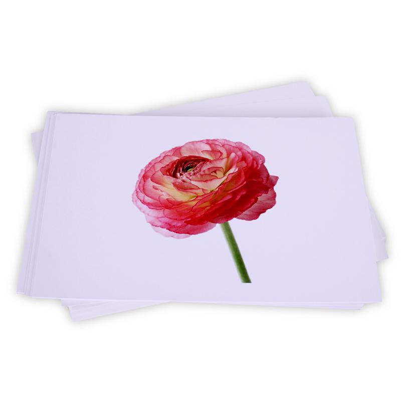 Flash Card chu de cac loai hoa