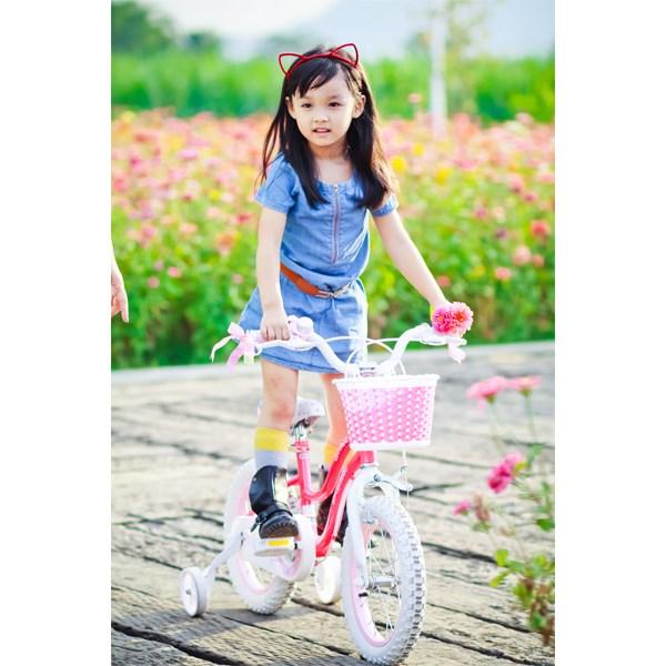 Xe đạp cho bé Royal Baby Star RB16G